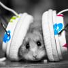 Какую музыку слушают мои дети? 1 часть