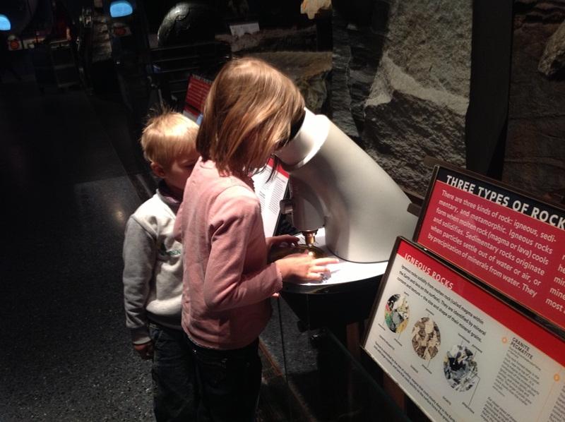 С детьми по музеям в США. Часть 1. Музей естественной истории в Нью-Йорке