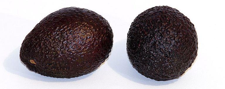 Полезный и загадочный плод авокадо