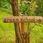 Зелёная школа на Бали