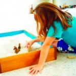 Бесплатный вебинар «Песочная терапия дома»